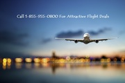 Attractive Flight Deals for Local and International Tours